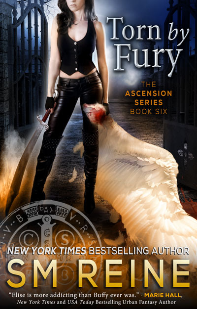 Book Cover: Torn by Fury